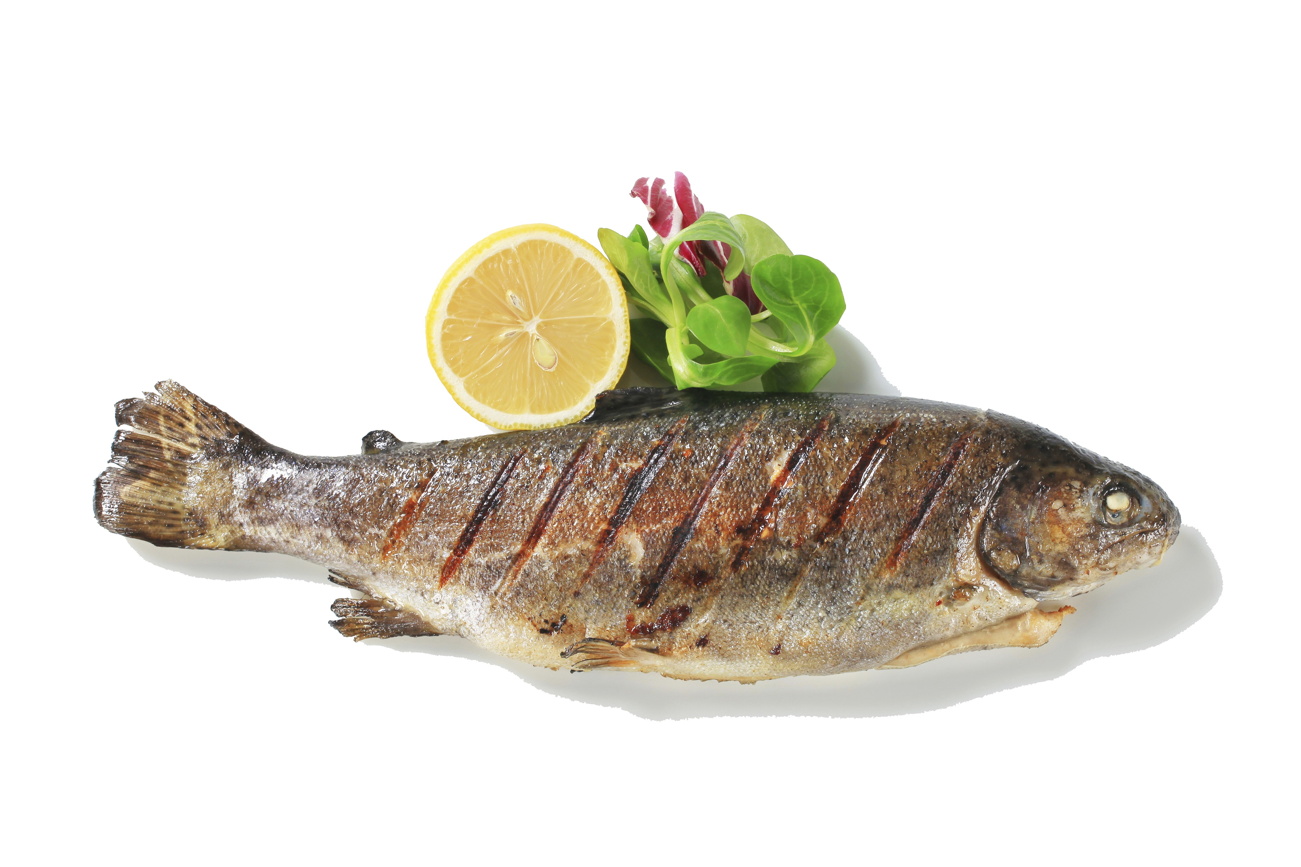 photo of cooked fish